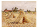 Corn Stooks by Bray Church  1872 (Oil on Paper Laid on Board)