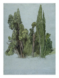 The Cypresses at the Villa D'Este  Tivoli (W/C and Gouache with Graphite on Paper)