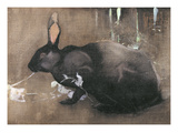 A Black Rabbit (Bodycolour on Linen)