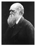 Charles Darwin  C1870 (B/W Photo)