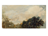 Cloud Study with Trees  1821 (Oil on Paper Laid Down on Board)