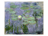 Waterlilies  1915 (Oil on Canvas)