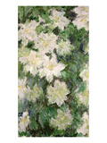 White Clematis  1887 (Oil on Canvas)