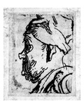 Old Man with a Snub Nose  C1629 (Etching)
