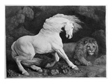 A Horse Affrighted by a Lion  Engraved by the Artist  1788 (Etching)