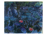 Waterlilies with Reflections of a Willow Tree  1916-19 (Oil on Canvas)