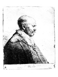 Portrait of a Bald-Headed Man  1630 (Etching)