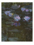 Waterlilies  1914-17 (Detail of 158601) (Oil on Canvas)