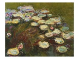 Waterlilies  1914-17 (Detail of 82359) (Oil on Canvas)