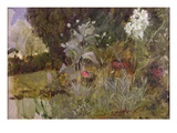 Study of Flowers and Foliage  for &#39;The Enchanted Garden&#39; (Oil on Canvas) (See 190595)