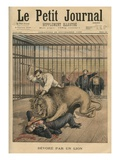 Being Devoured by a Lion  Front Cover Illustration from 'Le Petit Journal'