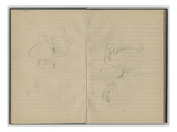 Swans  from a Sketchbook  1886 (Pencil on Paper)