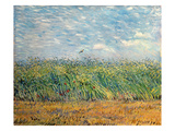 Wheatfield with Lark  1887 (Oil on Canvas)