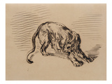 Tiger Frightened by a Snake  1858 (Pen and Ink on Tracing Paper)
