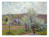 Spring in the Environs of Paris  Apple Blossom  1879 (Oil on Canvas)