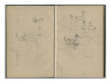 Swan and Ducks  from a Sketchbook  1886 (Pencil on Paper)