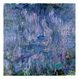 Waterlilies and Reflections of a Willow Tree  1916-19 (See Detail 414405) (Oil on Canvas)
