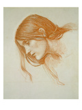 Study of a Girl's Head (Red Chalk on Paper)