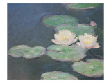 Waterlilies  Evening; Detail (Oil on Canvas) (See also 154665)
