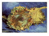 Sunflowers  1887 (Oil on Canvas)