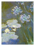 Waterlilies and Agapanthus  1914-17 (Detail)
