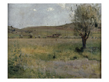 Summer Landscape (Oil on Canvas)