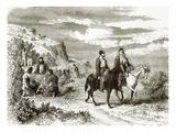 Nut-Gathering on Mount Athos