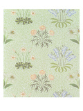 Daisy Design Wallpaper with Lily of the Valley and Other Wild Flowers on a 'Willow' Background