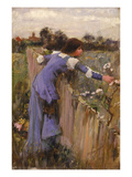 The Flower Picker (Oil on Canvas)