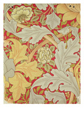 Acanthus Leaves and Wild Rose on a Crimson Background  Wallpaper Design