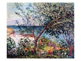 The Artist&#39;s Garden in Brittany  1905 (Oil on Canvas)