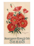 Poster Advertising Northrup  Kings and Co's Seeds  C1898 (Colour Litho)