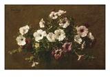 Petunias  1881