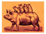 Pig with its Piglets  Illustration from 'Cole's Funny Picture Book' (Digitally Enhanced Image)