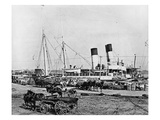 Steamboats Loading Cotton at New Orleans  Louisiana  C1890 (B/W Photo)