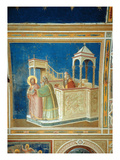 The Expulsion of Joachim from the Temple  C1305 (Fresco)