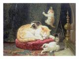 Fireside Bliss (Oil on Panel)