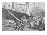 Unloading a Ship  Port of New York City  1877 (Litho)