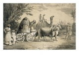 Harem Carriage of the King of Delhi  from 'Voyages in India'  Pub by Smith  Elder and Co  1858