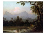 Rio De Janeiro  Brazil  C1865 (Oil on Board)