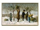 Gathering Mistletoe (Colour Litho)