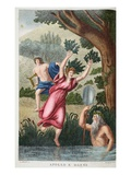 Daphne into a Laurel  Illustration from Ovid&#39;s Metamorphoses  Florence  1832
