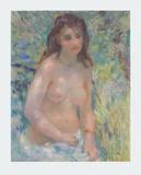 Nude in the Sun - Nu au Soleil