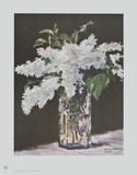 White Lilac in a Glass Vase