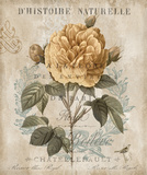 Botanique II