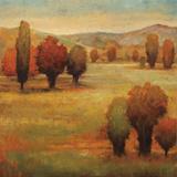 Hillside Meadow I