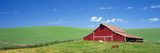 Red Barn with Horses WA