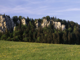 Limestone Rocks in St Brais Mts of Jura Afternoon Nr French Border Switzerland