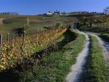 Italy  Piemont  Road