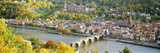 Aerial View of a City at the Riverside  Heidelberg Castle  Heidelberg  Baden-Wurttemberg  Germany